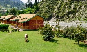 Top 5 Hotels in Bhaderwah