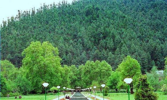 mughal-garden-verinag