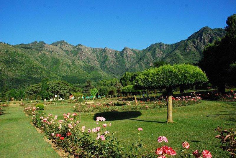 Nehru Botanical Garden Zabarwan Mountain