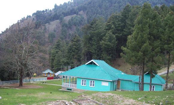 chinar-kishtwar-1