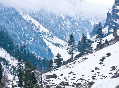 untitled-1_0005_sonmarg3