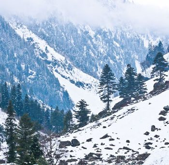 Gulmarg Kashmir Snow Package
