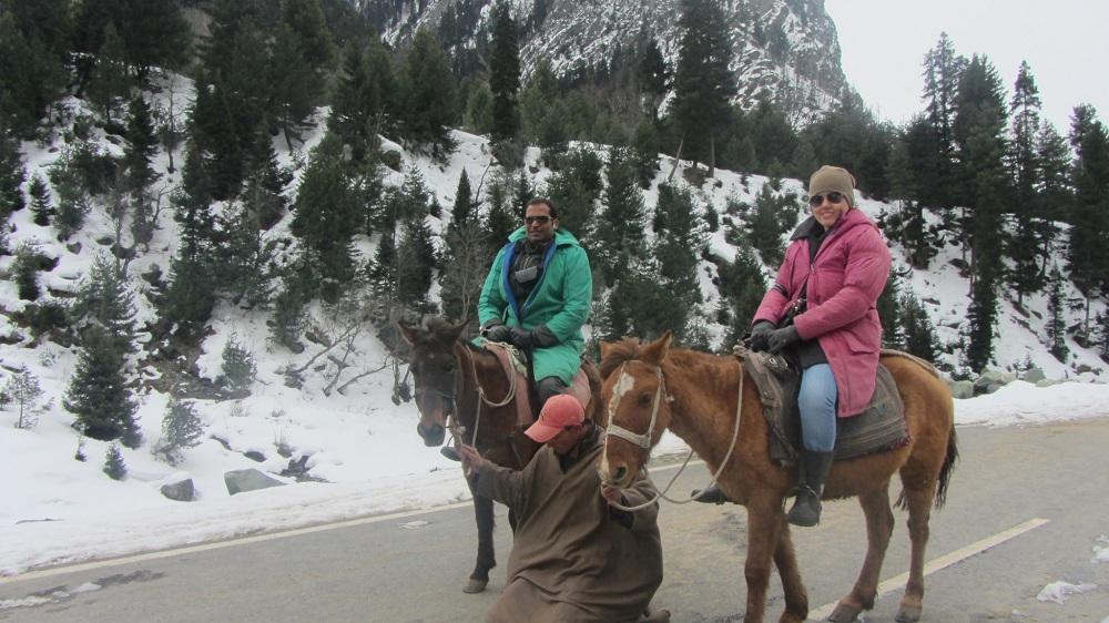 Pony Ride