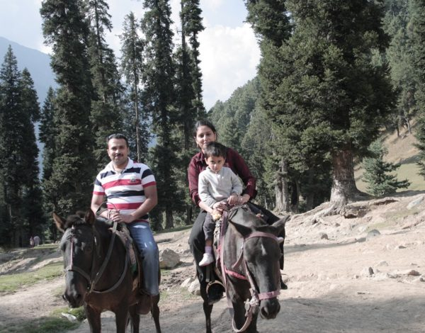 Wonderful Experience with Value for Money in Kashmir