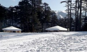 Most Popular Sightseeing in Patnitop