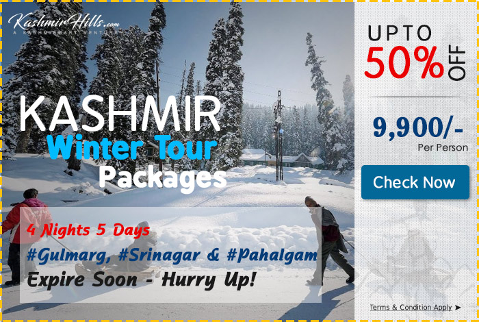 kashmir-winter-packesg-popup4