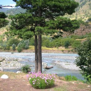 River in pahalgam